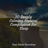 30 Deeply Calming Natural Compilation for Sleep by Deep Sleep Meditation