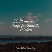 30 Phenomenal Songs for Serenity & Sleep de Massage Tribe