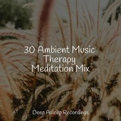 30 Ambient Music Therapy Meditation Mix by S.P.A