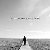 Meditação Caminhando (Música Calmante de Flauta e Sons de Chuva, Atenção Plena e Redução de Estresse) de Meditação e Espiritualidade Musica Academia