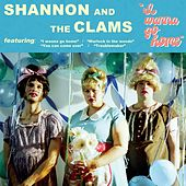 I Wanna Go Home by Shannon and The Clams