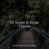 30 Songs to Relax Tension von Entspannungsmusik