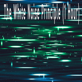 The White Noise Principle (1 Hour) by Color Noise Therapy