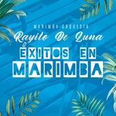 Éxitos en Marimba by Marimba Orquesta Rayito De Luna