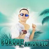 Porque Sua Amiga Deu (feat. Deto na Base & MC Levin) de Luanzinho do Recife