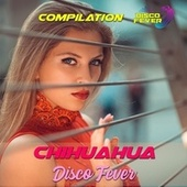 Chihuahua Compilation by Disco Fever
