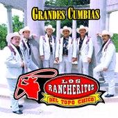 Grandes Cumbias by Los Rancheritos Del Topo Chico