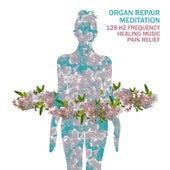 Organ Repair Meditation: 128 HZ Frequency Healing Music, Pain Relief by Headache Relief Unit