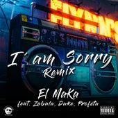 I´m Sorry (Remix) de Maka