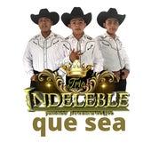 Que Sea de Trio Indeleble