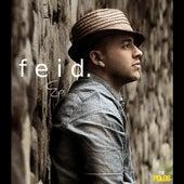 Feid by FEID