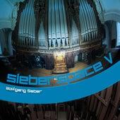 sieberspace V von Wolfgang Sieber