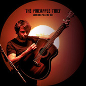 Someone Pull Me out (Nothing But The Truth) by The Pineapple Thief