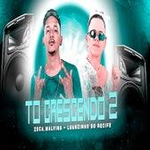 Tô Crescendo 2 (feat. Mc Gw) de Luanzinho do Recife