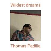 Wildest dreams (pop remix) de Thomas Padilla