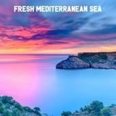 Fresh Mediterranean Sea by Ocean Waves For Sleep (1)