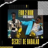 Secret de Babalao de Fior 2 Bior