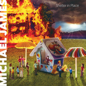 Shelter in Place by Michael James