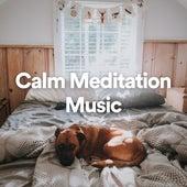 Calm Meditation Music by Calm Doggy