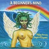 A Beginner's Mind by Sufjan Stevens