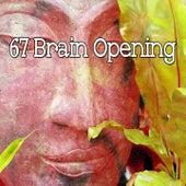 67 Brain Opening di Lullabies for Deep Meditation