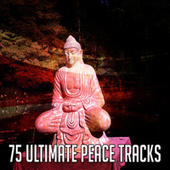 75 Ultimate Peace Tracks by Massage Therapy Music