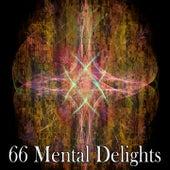 66 Mental Delights von Entspannungsmusik