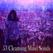 53 Cleansing Mind Sonds von Entspannungsmusik