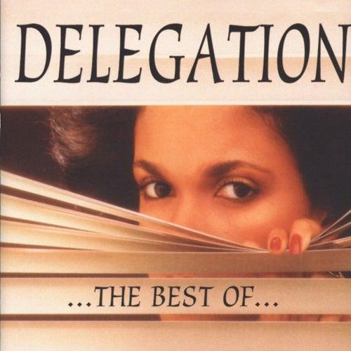 Delegation: The Best Of... by Delegation