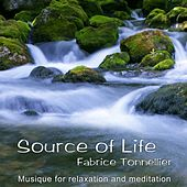 Source of Life: Music for Relaxation and Meditation by Fabrice Tonnellier