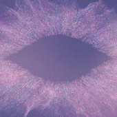 Music For Psychedelic Therapy (Excerpt) by Jon Hopkins