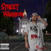 Street Warrior de Mr. Phoenix