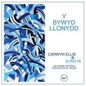 Y Bywyd Llonydd von Carwyn Ellis