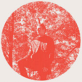 Heartland de Owen Pallett