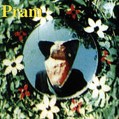 Telemetric Melodies by Pram