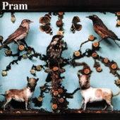Museum Of Imaginary Animals by Pram