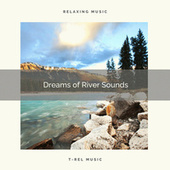 2021 Dreams of River Sounds by Sleepy Times