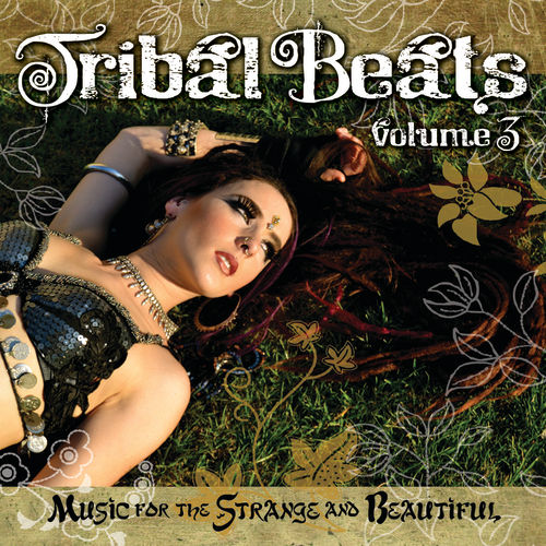 Tribal Beats Volume 3 by Various Artists