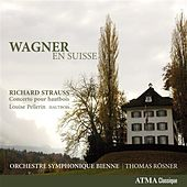 Wagner: En Suisse by Various Artists