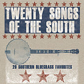 20 Songs of the South de Various Artists