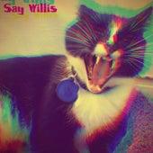 Say Willis by Nathan James