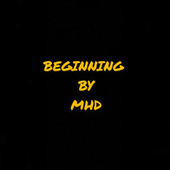 BEGINNING de MHD