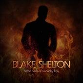Come Back As A Country Boy by Blake Shelton