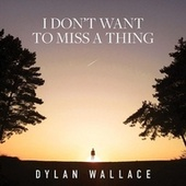 I Don't Want to Miss a Thing by Dylan Wallace