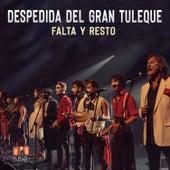 Despedida del Gran Tuleque (Mpu en Vivo) by Falta y Resto