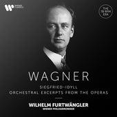 Wagner: Siegfried-Idyll & Orchestral Excerpts from the Operas fra Wilhelm Furtwängler