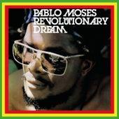Revolutionary Dream von Pablo Moses