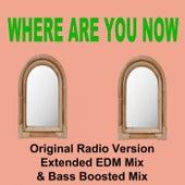 Where Are You Now (Original Radio Version, Extended EDM Mix & Bas Boosted Mix) de Calum Frequencies