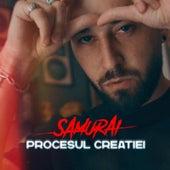 Procesul Creatiei by Samurai