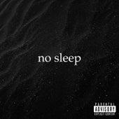 no sleep de Palmer
